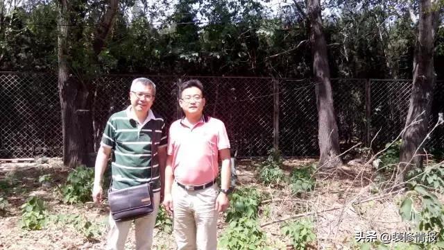 52岁大叔,把6个集装箱变200㎡豪宅,在北京过上了隐居的日子