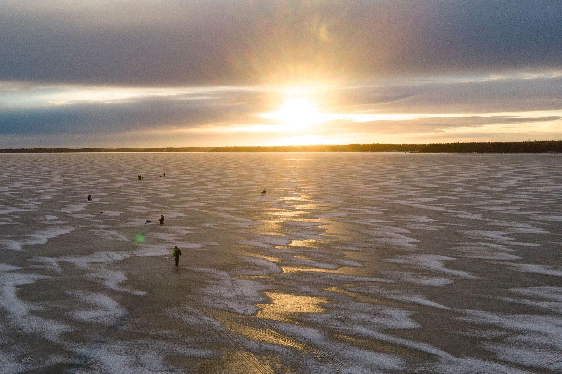 """芬蘭海灘驚現成千上萬""""怪蛋"""" 近看才知是…(組圖)"""