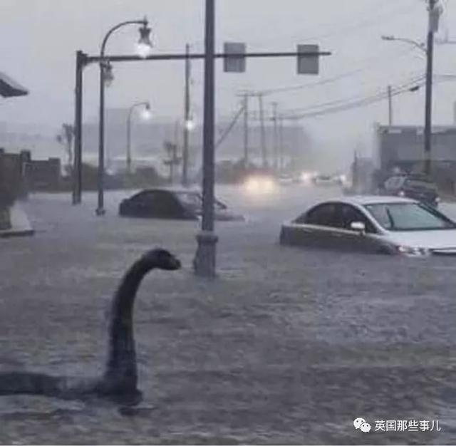鲍里斯慰问个洪水灾区也能被群嘲:拖个地板跟脱欧一样烂