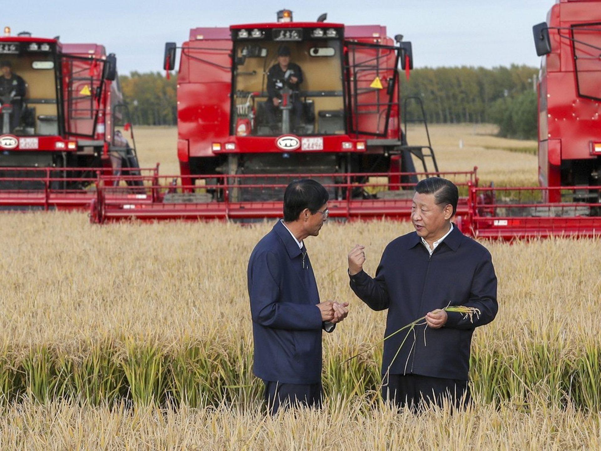 2018年9月25日,习近平(右)在黑龙江了解粮食生产情况。(新华社)