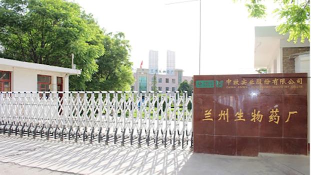 兰州疫苗厂泄漏导致疫情蔓延 中国疫苗能信吗?