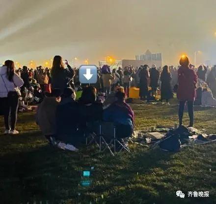 王菲音乐节上开心到蹦丢手机,网友神回复了