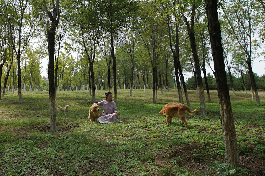 京郊女青年的抱团养老村:人人作息规律,能养活自己