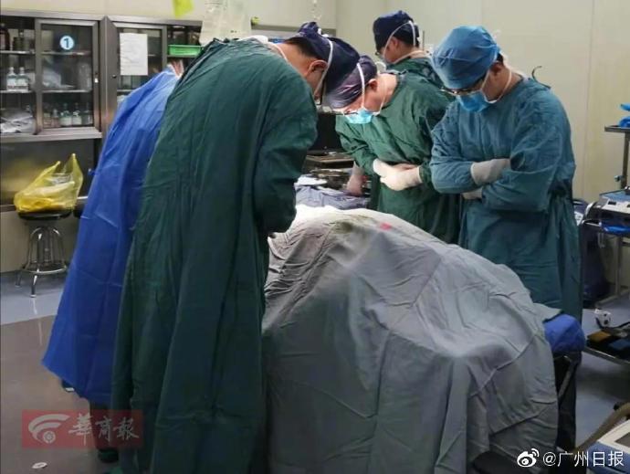 西安交大24岁研究生发病离世家属捐献5处器官
