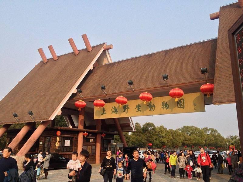 上海野生动物园饲养员遭熊群撕咬致死 游客目击