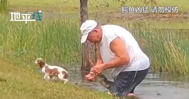 小狗落水遇难 大叔神力掰开鳄鱼嘴救援