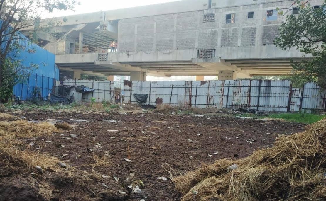 孟买发现超大牛粪坑,警察眼睁睁看着10岁男孩淹死