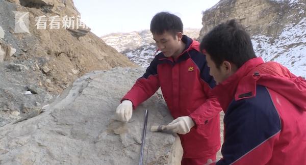 安塞油田恐龙来过!延安发现首例恐龙足迹化石