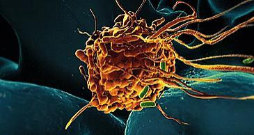 残忍的事实:父母可能把这8种癌遗传给下一代