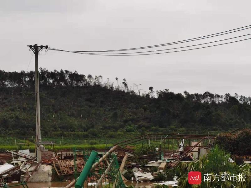 """遭龙卷风袭击武汉村庄:掠过之处山林树木被""""剃头"""""""