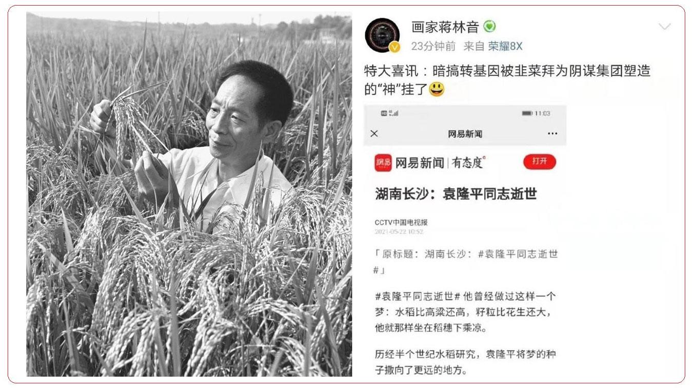 """北京对""""侮辱袁隆平""""零容忍 多省市网民被拘 袁已被神化"""