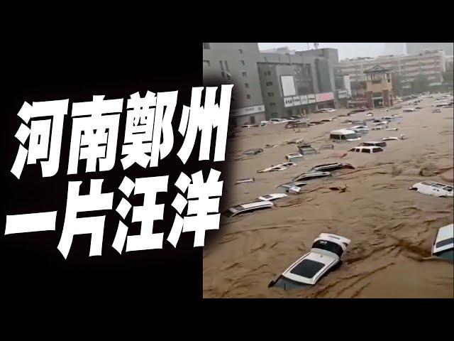 官媒:河南暴雨到底有多大?郑州一小时降雨量竟达…