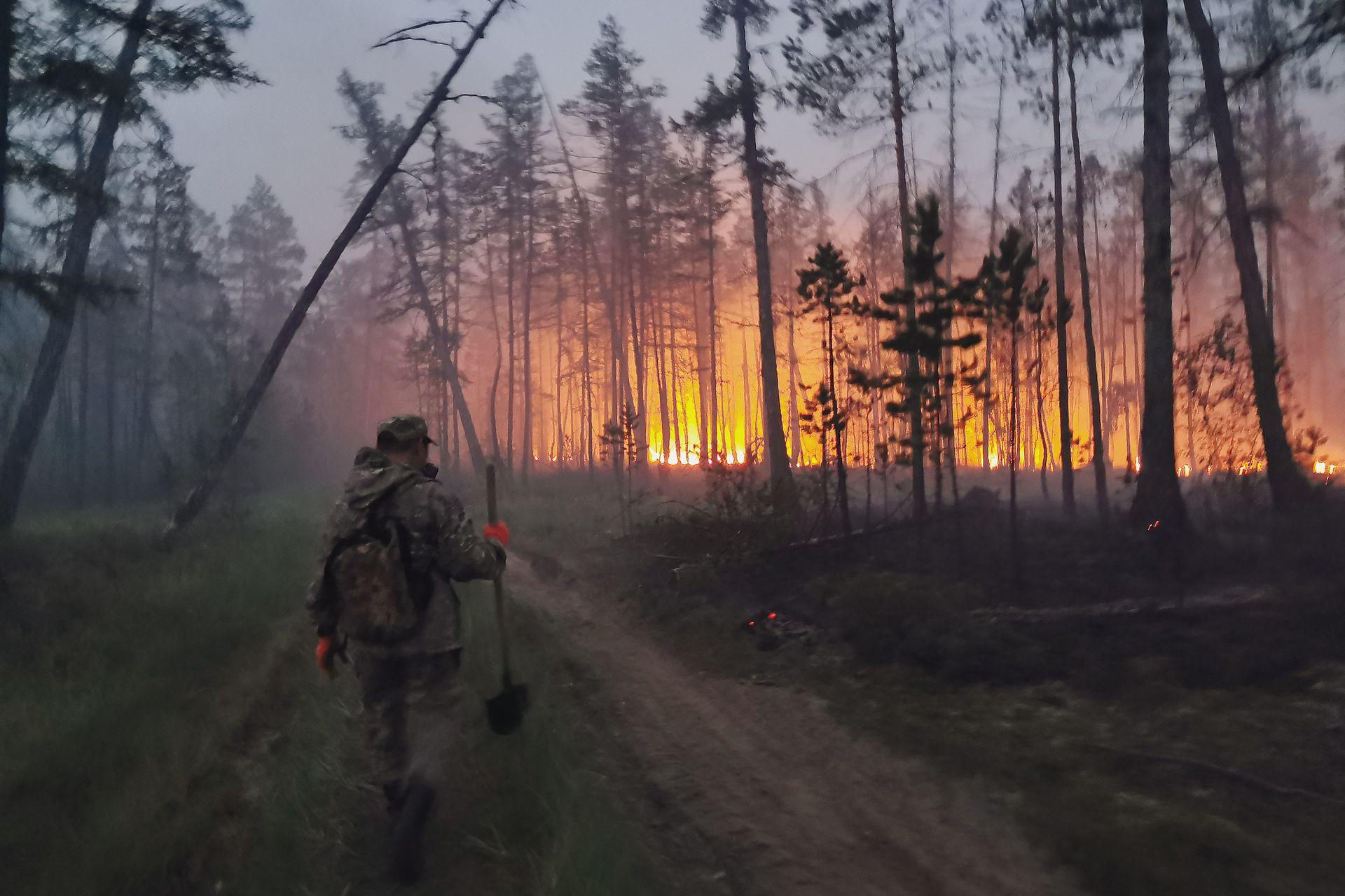 """一场大火24小时吞没10万公顷森林 这国多地成""""烟城"""""""