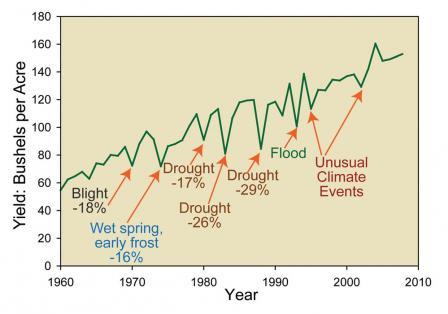 """全球""""千年一遇""""极端天气肆虐,我们算了一笔经济账"""