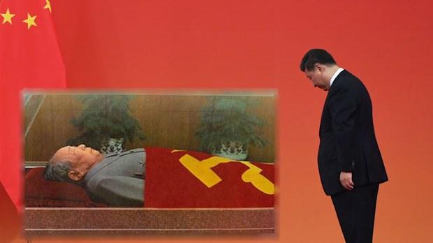 因为怕它,毛泽东不敢让毛远新参加抗美援越