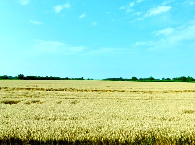 中西部的田园诗: 眼中有景,心中有爱,身边有你
