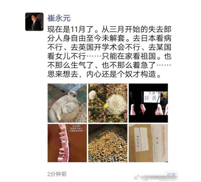 驚!傳崔永元遭半軟禁超半年 無可奈何(圖)