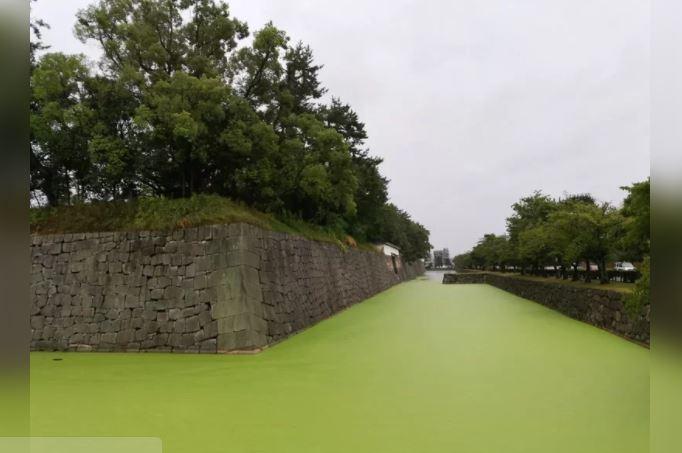 京都百年古迹护城河变