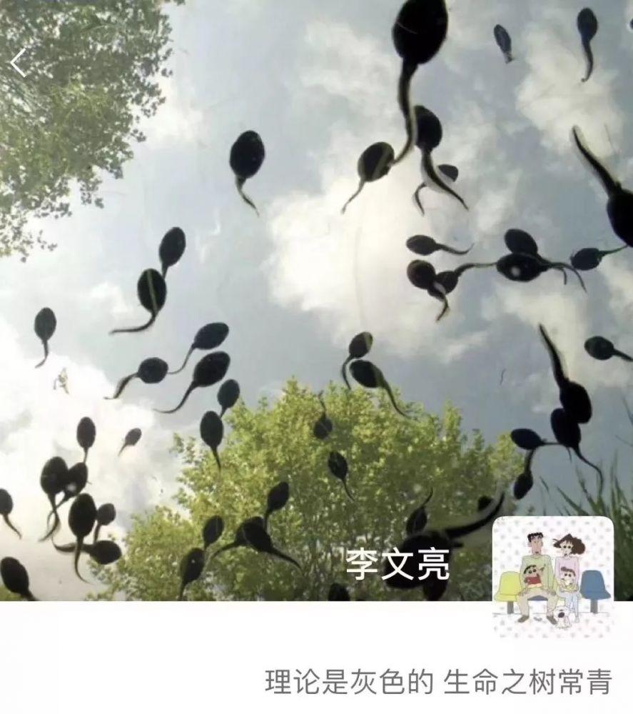 普通人李文亮:这样的一生离我们有多远?(图)
